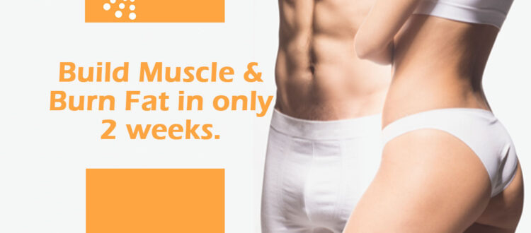 Build-Muscle-&-Burn-Fat-in-only-2-weeks